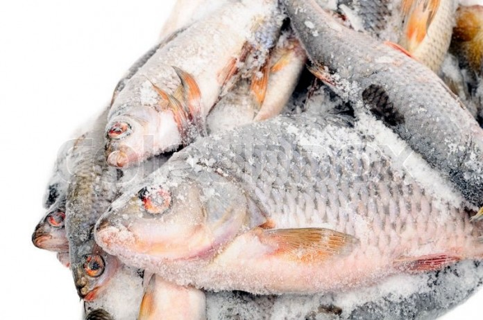Frozen fish scarcity looms over cbn forex restriction for Best frozen fish to buy at grocery store