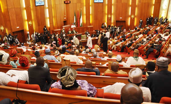 Senate support fuel price increase | Punch Newspapers
